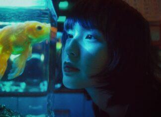 Efektowne akwarium